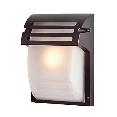 Truelite Industrial Metal Wall Lantern 1 Light Glass Shade Outdoor Wall Sconce
