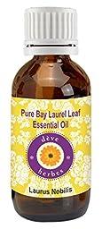 Pure Bay Laurel Leaf Essential oil 15ml- (Laurus nobilis) 100%Natural and Therapeutic Grade