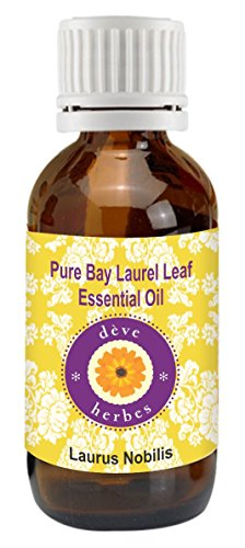 Pure Bay Laurel Leaf Essential oil 15ml- (Laurus nobilis) 100%Natural and Therapeutic Grade