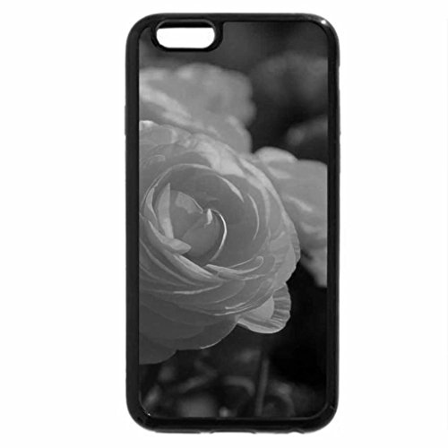 iPhone 6S Case, iPhone 6 Case (Black & White) - Colorful Roses for all at DN