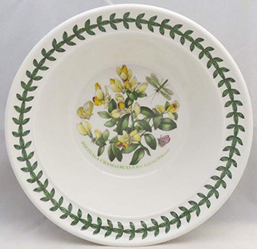 Portmeirion Botanic Garden Rim Cereal/Oatmeal Bowl (Box Leaf Milkwart)