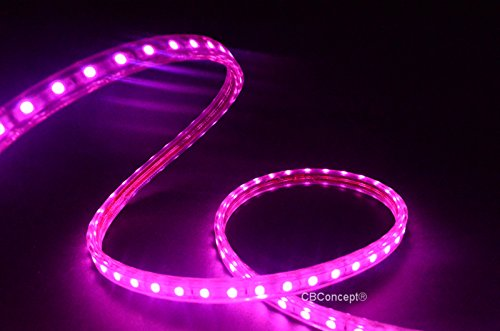 Cbconcept 80 feet 120 volt led smd3528 flexible flat led strip rope cbconcept 80 feet 120 volt led smd3528 flexible flat led strip rope light christmas lighting indoor outdoor rope lighting ceiling light aloadofball Image collections