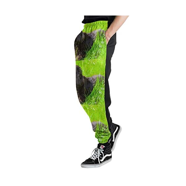ZALAYUNI Irish Water Spaniel Men Sport Pants, Soft and Comfortable Sweatpants, Joggers Pants for Men 2