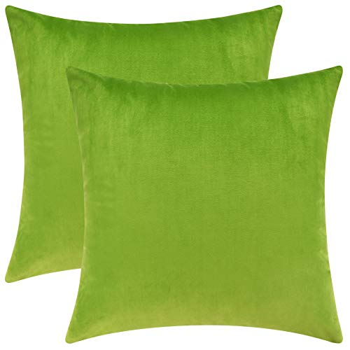 Mixhug Set of 2 Cozy Velvet Square Decorative Throw Pillow Covers for Couch and Bed, Chartreuse, 18 x 18 Inches (Pillows Green Lime Bed)