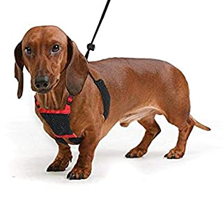 SPORN! Nylon Non Pulling Dog Harness, Small, Red