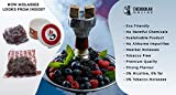 Shisha Flavors by Sunlight – Non-Tobaco Herbal