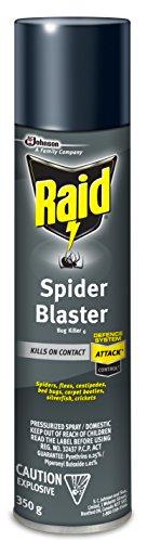 Raid Spider Blaster Bug Killer Aerosol - 350 Gram