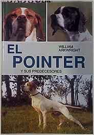 El Pointer Y Sus Predecesores Historia Ilustrada Del Perro