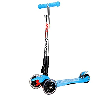 Rimable Foldable Maxi Kick Scooter with LED Light up Wheels