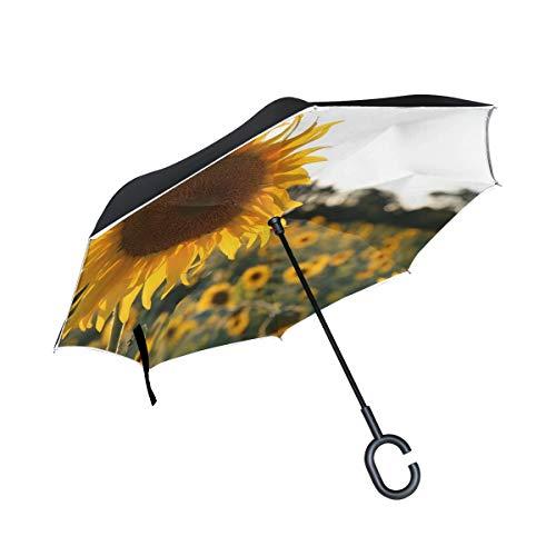 (RYUIFI Double Layer Inverted Sunflower Light Provence Umbrellas Reverse Folding Umbrella Windproof Uv Protection Big Straight Umbrella for Car Rain Outdoor with C-Shaped Handle)