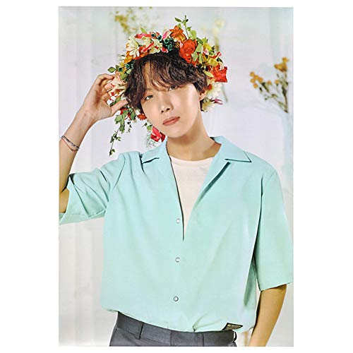 Youyouchard BTS Bangtan Boys BTS Poster BTS Official Supported Poster for 2019 Spring Concert, 28.519.8in(J-Hope)