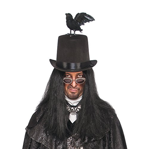Raven Poe Costume (Rubie's Costume Co. Men's Raven Top Hat Costume Accessory, As Shown, One Size)