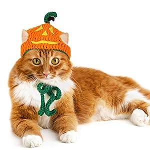 Legendog Cat Halloween Costume Handmade Pet Pumpkin Hat Halloween Apparel for Cats Puppy Small Dogs