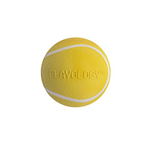 Image of Playology Squeaky Chew Ball Dog Toy Chicken Scent, Small, Yellow