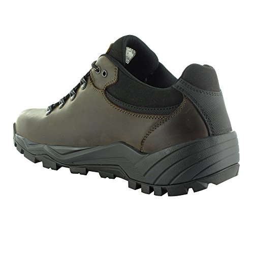 Hi-Tec Altitude Pro Low Waterproof Hiking Scarpe - SS18 marrone
