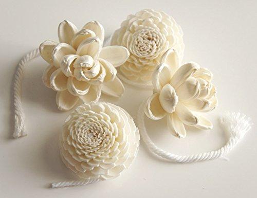 Exotic Elegance Set of 4 Magnolia and Jasmine Sola Flower Diameter 2