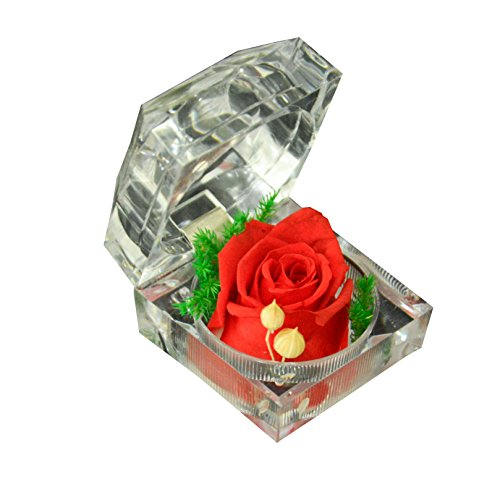 Precious Preserved Fresh Rose in Crystal Ring Box – DEFAITH® Perfect Handmade Gift for Anniversory, Birthday, Christmas, Mother's Day,Wedding,Valentin…