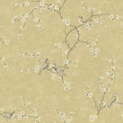 York Wallcoverings HP0324 Hand Painted III Birds W/Blossoms Wallpaper, Light Gold/Taupe/Grey/White/Tan (Three Light Blossom)