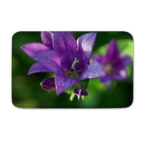 Welkoom Large Front Door Mat Ringtone Flower Mucha Bee Violet Non Slip Home Floor Entrance Doormat Indoor/Outdoor (20, 32)]()