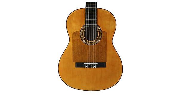 Golpeador para guitarra transparente Rectangular 20x20cm