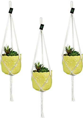 Macrame Plant Hangers Hanging Planter - 3 Pack Indoor or Outdoor Cotton Rope Hanging Plant Holder for Flower Pots - Modern Boho Home Decor, 3 Legs 42 Inch