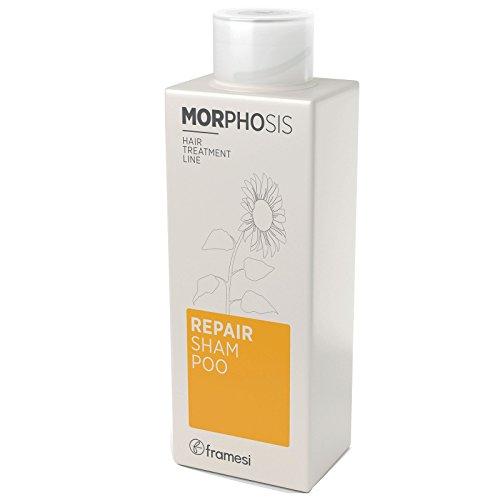 Framesi Morphosis Repair Shampoo, 8.4 Ounce (Shampoo Framesi Nourishing)