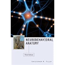 Neurobehavioral Anatomy, Third Edition