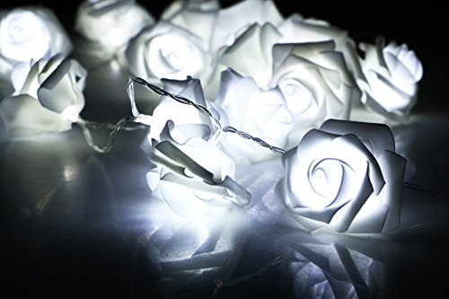 Beautiful Light Photography - Avanti 20 Led Battery Operated Premium String Romantic Flower Rose Fairy Light Lamp Outdoor for Valentine's Day, Wedding, Room, Garden, Christmass, Patio, Festival Party Decor (White)