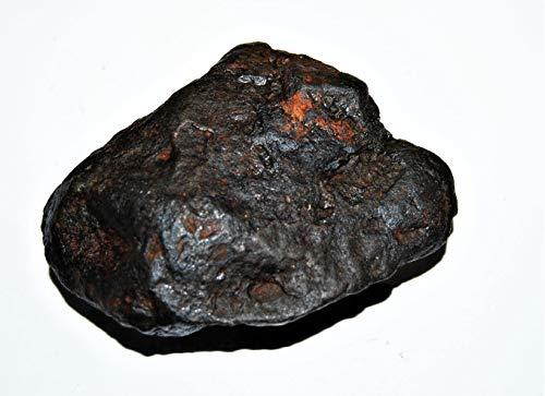 Fossil, Meteorites, & More NANTAN Iron Nickel Meteorite -Genuine-691.7 Grams+ Card & COA# 14359 27o by Fossil, Meteorites, & More (Image #1)