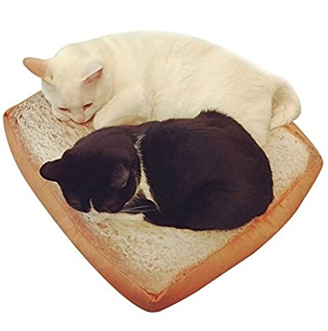 Amazon.com: iumer Pet Cat cama colchón cojín Cartoon pan ...
