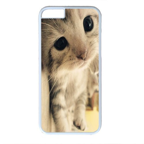 wskshop Couple iPhone 6 Case, Customized Cute Kitten Plastic Cover Case for iPhone 6(White)