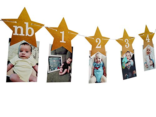 (PinkFish Shop Twinkle Twinkle Little Star Monthly Photo Banner DIY - for Baby's 1st Birthday First Cake Smash)
