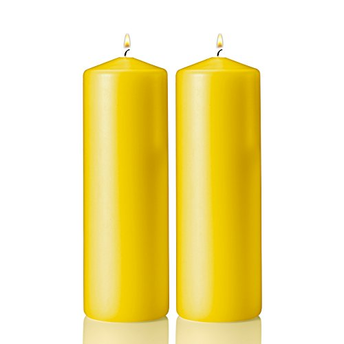Citronella Pillar Candle - Set of 2 Summer Scented Citronella Candles - 3 inch Tall, 9 inch Thick – 72 Hour Protection from Mosquito - Bug Repellent for Indoor/Outdoor Use - Made in USA