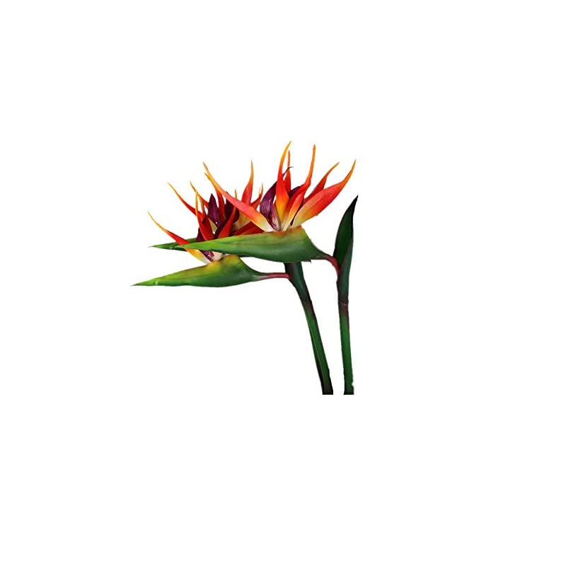 silk flower arrangements large bird of paradise 32 inch permanent flower ,flower stem 0.5 inch ,uv resistant no fade flower part is made of soft rubber pu,artificial flower plants for home office 2 pcs (orange red)