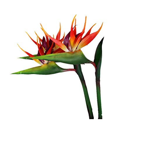 DODXIAOBEUL Large Bird of Paradise 33 Inch Permanent Flower,Flower stem 0.5 Inch,Flower Part is Made of Soft Rubber PU,Artificial Flower Plants for Home Office 2 Pcs (Orange red) ()