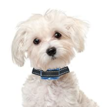 Superior Bark Collar For XS - Small Anxious Type Dogs - Silent - Rechargeable No Pain Anti Bark Collar - 5lb to 30lb - No More Expensive Batteries - Sapphire - Easy to Set Up & Use