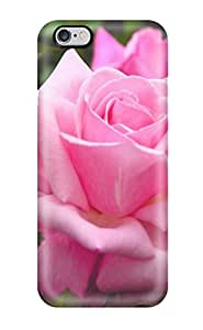 High Grade Flexible Tpu Case For Iphone 6 Plus - Purple Rose Portret Nature Flower 5647214K44488563