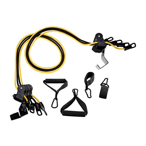 Gold's Gym Home Gym Total Body Resistance Training Exercise Program Door Attached