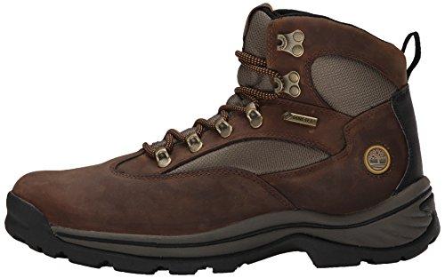 Trail Brown Chaussures Chocorua Randonnée Timberland Femme Z4qPn5