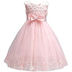 Girls Lace Dresses for Kids Toddler Girl Clothes Pageant Dresses Baby Princess Pink Clothes Sleeveless Summer Dress Mesh Tuller Flower O Neck Clothing Lace Dress 2T (Pink, 3)