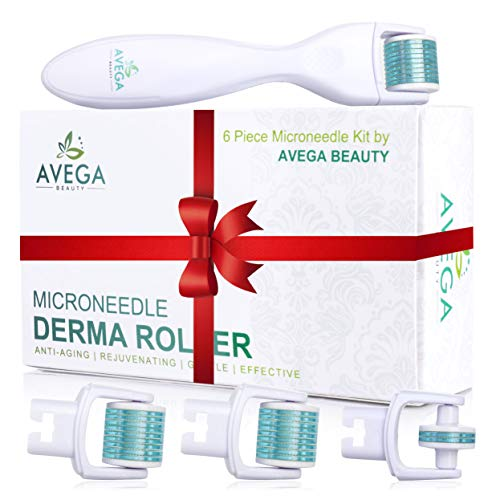 Derma Roller Kit for Face & Body: 0.25mm Length Microneedle Dermaroller Tool - Microneedling Facial Kits Include 3 Replacement Heads with 600 Titanium Micro Needles / 1 with 180 Needles - Storage Case