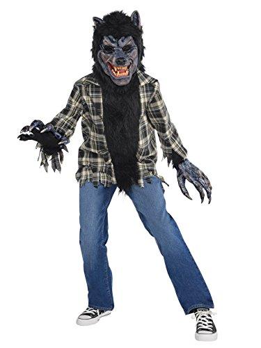 amscan Boys Rabid Werewolf Costume - Medium (8-10), Multicolor ()