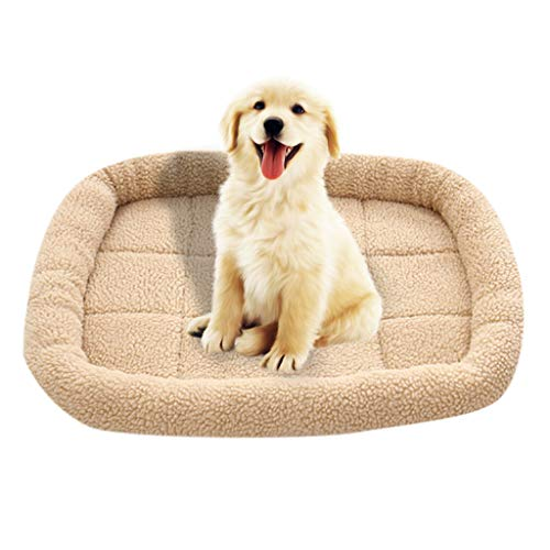 - Sikye Soft Pet Bed,Pure Color Lamb Cashmere Mat Thermal Pet Dog Cat Puppy Cushion Seat Mat (M 60x50cm, Yellow)