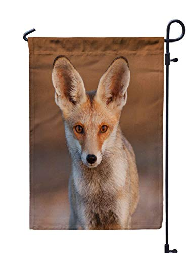 Shorping Welcome Garden Flag, 12x18Inch Desert Fox for Holiday and Seasonal Double-Sided Printing Yards Flags]()