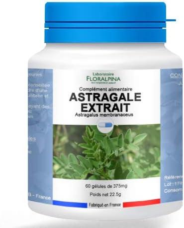 Astragale Plante : Soldes - Plante - Bénéfices | Pourquoi faire une cure ?
