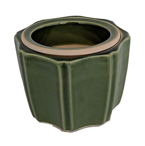 Octagon Self Watering Glazed Ceramic Pot - Green - 5 1/4 x 4 1/4