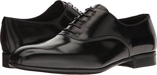 Salvatore Ferragamo Lace Up Oxfords (Salvatore Ferragamo Men's Dunn Plain Toe Lace Up Derbys, Black, 9.0 D D(M) US)