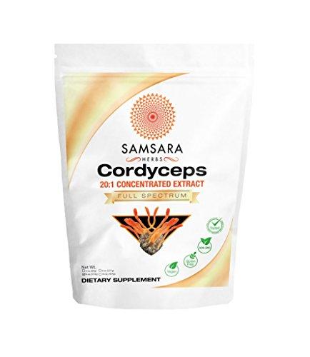 Cordyceps Mushroom Extract Powder (4oz/114g)