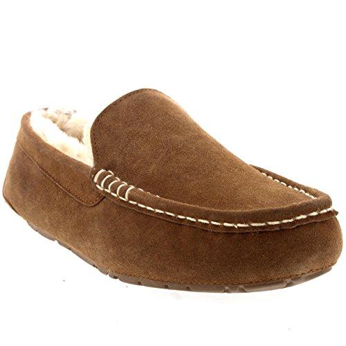 Casa Mocassinos Uomo Montone Australiano Pantofole Pelliccia Tan Camoscio 1TI6qfwWzv