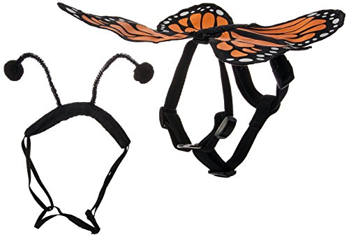 Zack & Zoey Butterfly Glow Harness Costume for Dogs, Small -